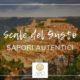 Scale del Gusto, sapori autentici sotto il cielo ibleo | APCI Ragusa